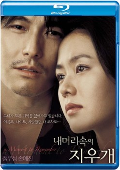 A Moment to Remember 2004 DC m720p BluRay x264-BiRD
