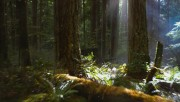 Trailers / Clips / Spots de Amanecer Part 2 - Página 4 34b8f4215994498