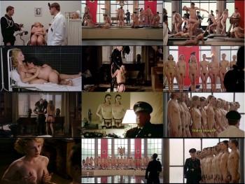 erotica cairns viper room brothel