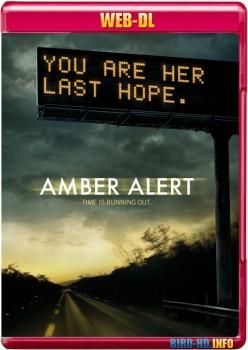 Amber Alert 2012 m720p WEB-DL x264-BiRD