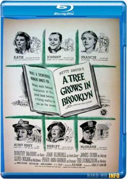 A Tree Grows in Brooklyn 1945 m720p BluRay x264-BiRD