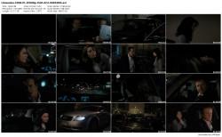 Kierowca / Limousine (2008) PL DVDRip XviD AC3-WiZARDS / Film Polski