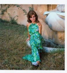 Raquel Welch: Mesmerizing Beauty: HQ x 1