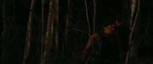Plaga wampirów / Stake Land (2010) PL.480p.BRRip.XviD.AC3-GHW / Lektor PL + RMVB