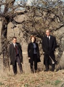 Cекретные материалы / The X-Files (сериал 1993-2016) 344128242488977