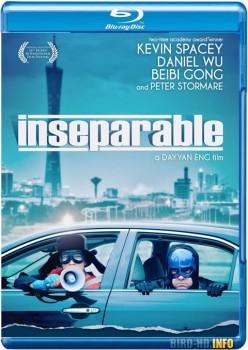 Inseparable 2011 m720p BluRay x264-BiRD