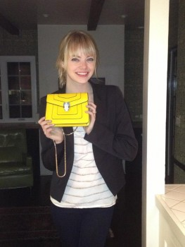 Emma Stone donating a purse to a charity fundraiser.