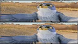 Zambezia (2012) PLDUB.Half.OU.1080p.BluRay.x264.AC3-FRUGO / DUBBiNG PL