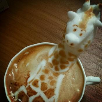 Buih kopi susu - Kotaku