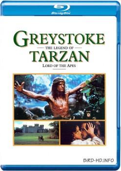 Greystoke: The Legend of Tarzan, Lord of the Apes 1984 m720p BluRay x264-BiRD