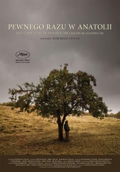 Polski plakat filmu 'Pewnego Razu W Anatolii'