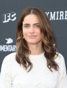 "Amanda Peet -                ""Brockmire"" and ""Documentary Now!"" FYC Event North Hollywood June 1st 2017."