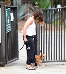 Minka Kelly - Walking her dog in LA 6/26/17